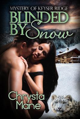 Blinded By Snow, Mystery of Keyser Ridge