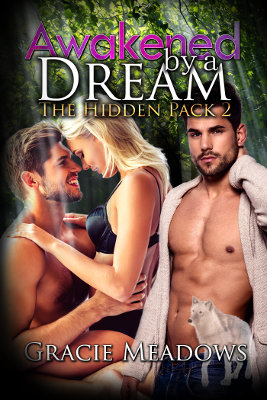 Awakened By A Dream (Hidden Pack 2)
