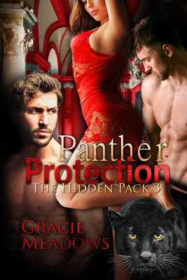 Panther Protection (Hidden Pack 3)